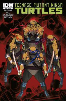 Teenage Mutant Ninja Turtles #26 coverB