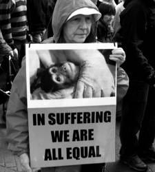 SHAC March - In Suffering.
