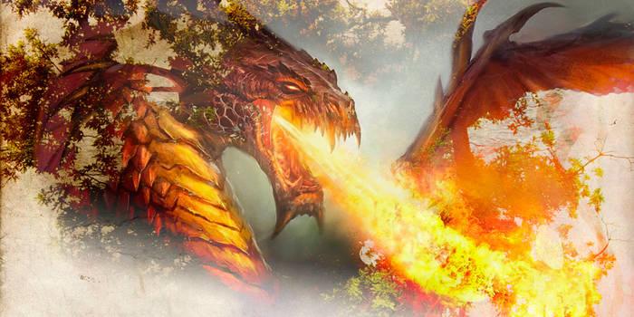 A Dragons Breath