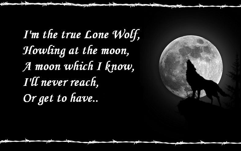 The TRUE Lone Wolf By