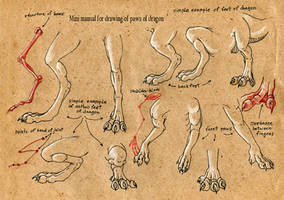 Tutorial Paws of dragon by EsaArts