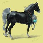 Hakne-pony