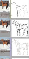Tutorial: how to draw a horse with ref