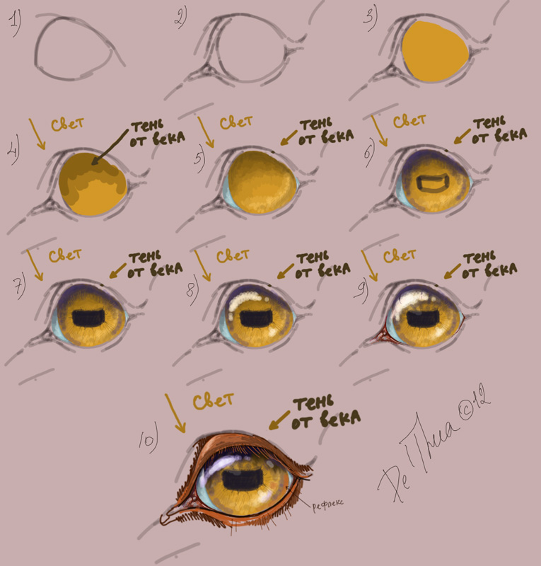 Tutorial: how to draw the eye of horse by EsaArts on DeviantArt