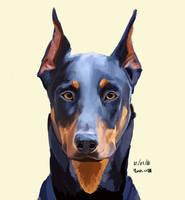Dog Today : Doberman by YanisaXlll