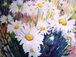 Daisies by p-e-a-k