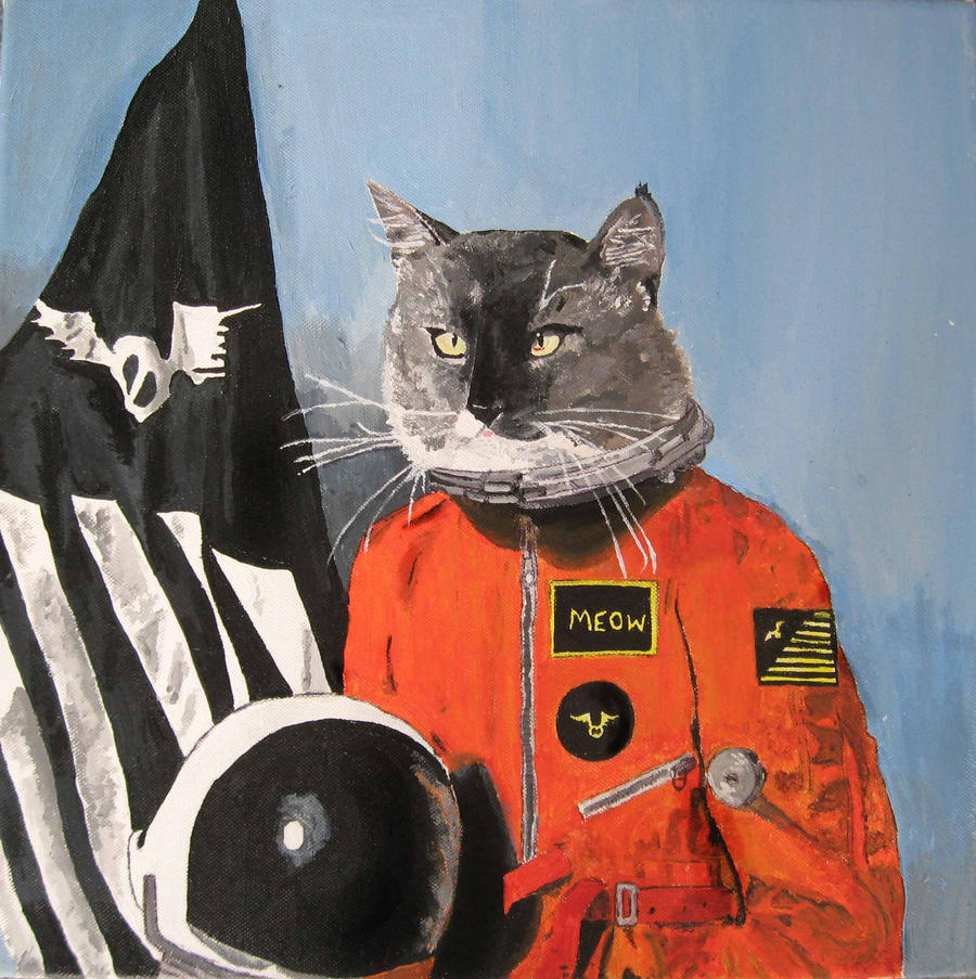 Cat In a Spacesuit by EMZL on DeviantArt