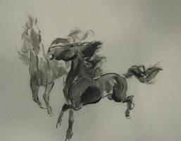 horse pair landscape