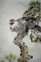 Hawk or Falcon or Eagle