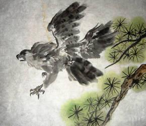 Falcon or Eagle or Hawk