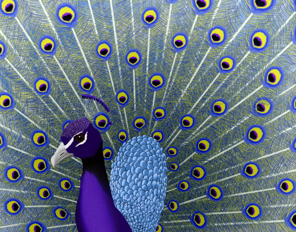 Peacock by phoenixfyre6967