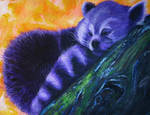 Purple Red Panda