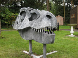 T-Rex skull by theforgery