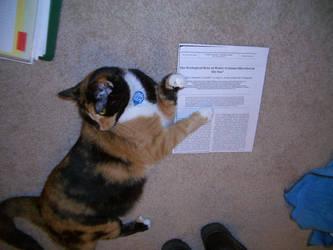 Teacher Cat by Lorienwoods