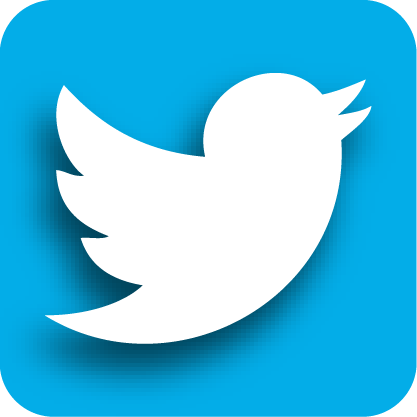 how to add twitter button