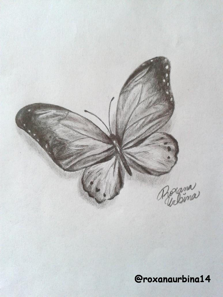 Butterfly drawing by roxanaurbina