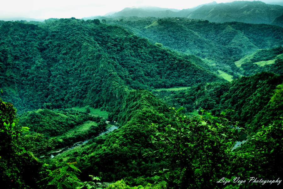 View from Ciales Puerto Rico 2