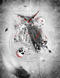 Owls Design