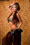 Gold and Maroon Bellydance