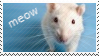 Stamp RQ meow rat by Acro-Sethya