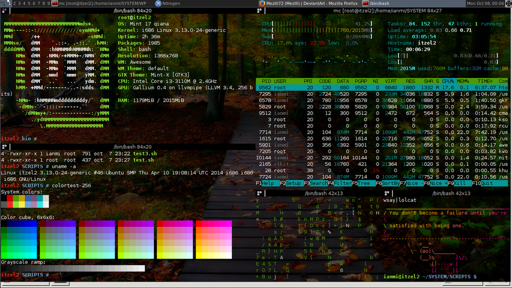 GNU/Linux Screenshot (Linux Mint Qiana) [Forest] by Meztli72