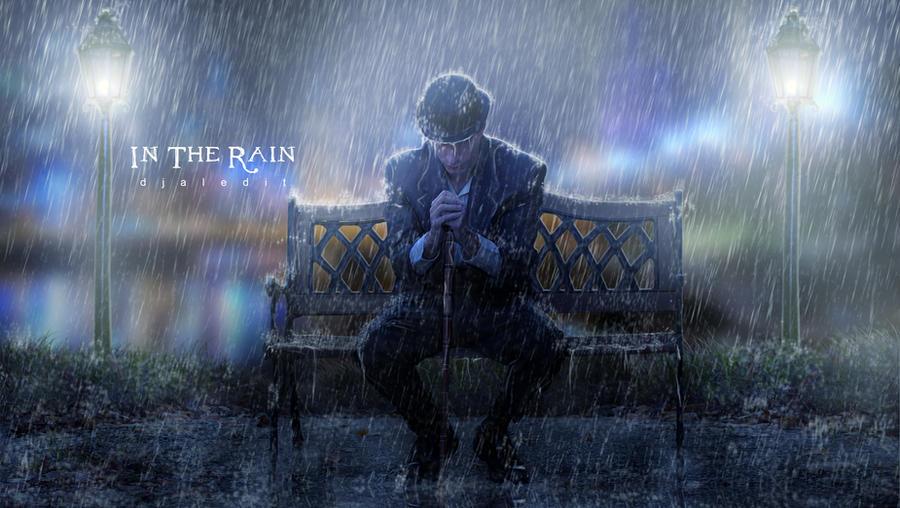In The Rain by djaledit