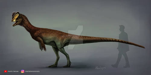 DILOPHOSAURUS 2020