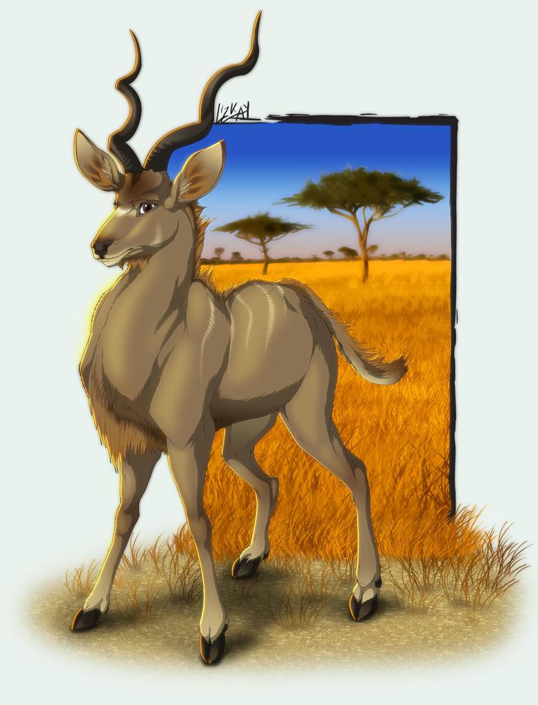 Greater Kudu   by lizkay Geyik Resimli Ödev Kapakları