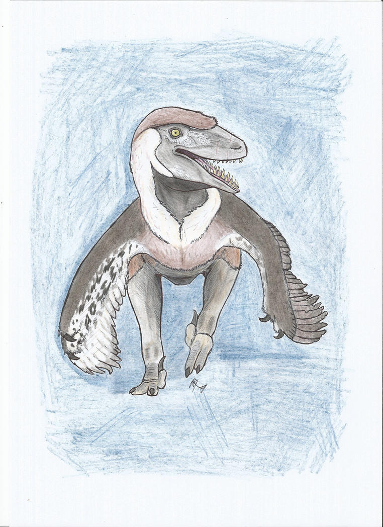 Utahraptor by PhanerozoicWild