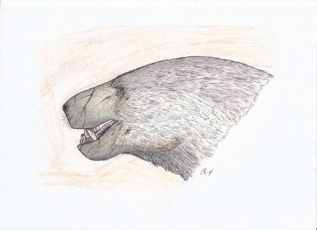 Inostrancevia alexandri by PhanerozoicWild