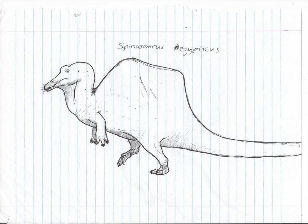 Spinosaurus sketch in class by PhanerozoicWild