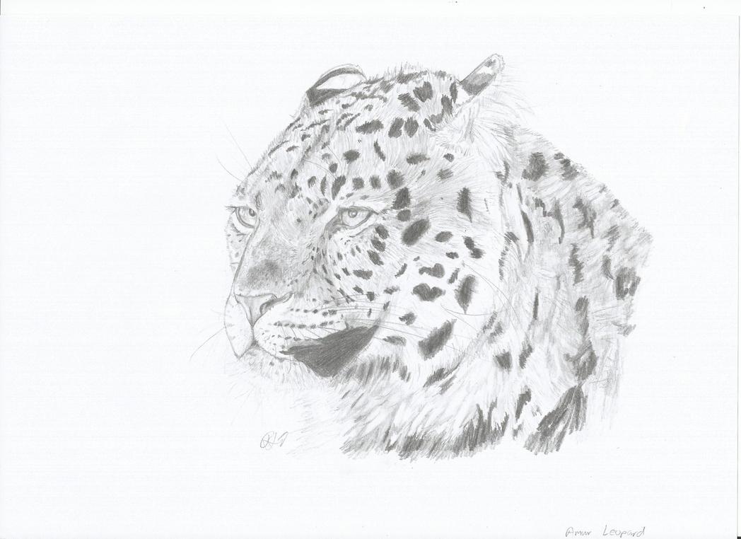 Amur Leopard by PhanerozoicWild