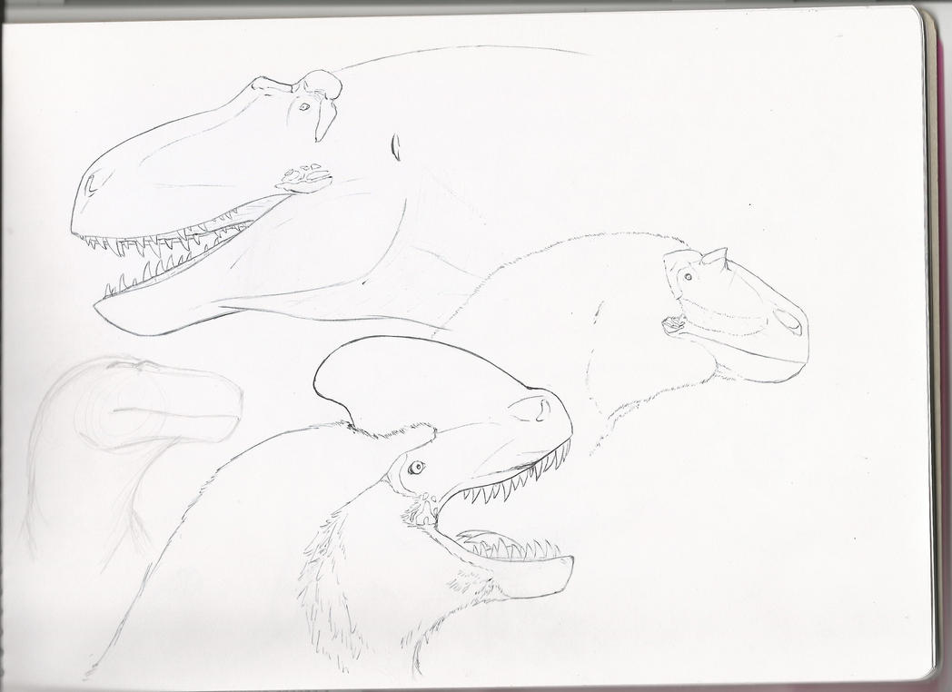 4 favorite tyrannosaurs by PhanerozoicWild
