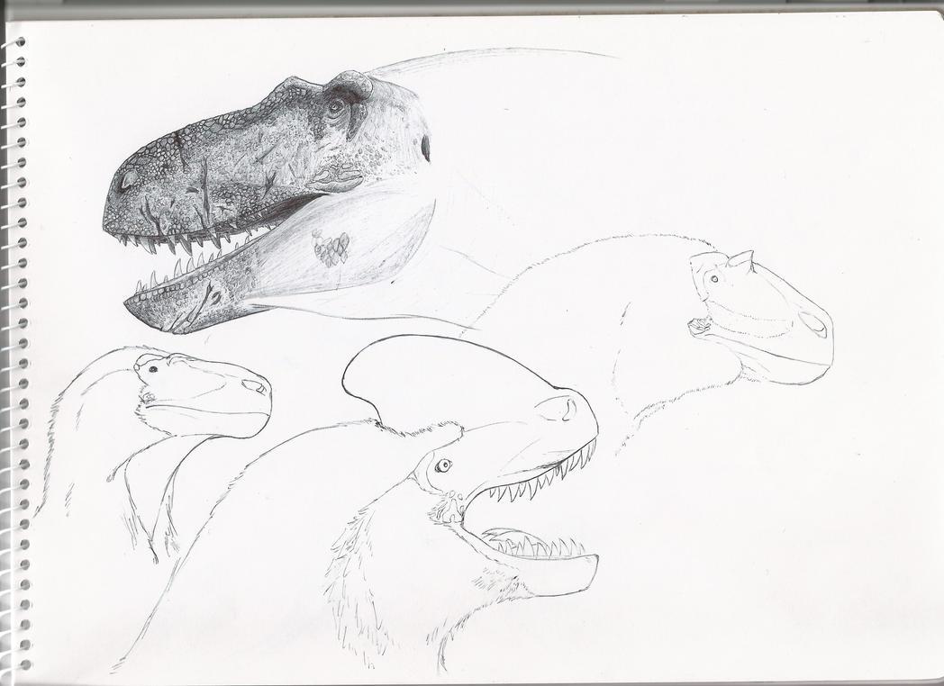 4 favorite tyrannosaurs (progress!) by PhanerozoicWild