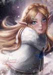 Winter Zelda
