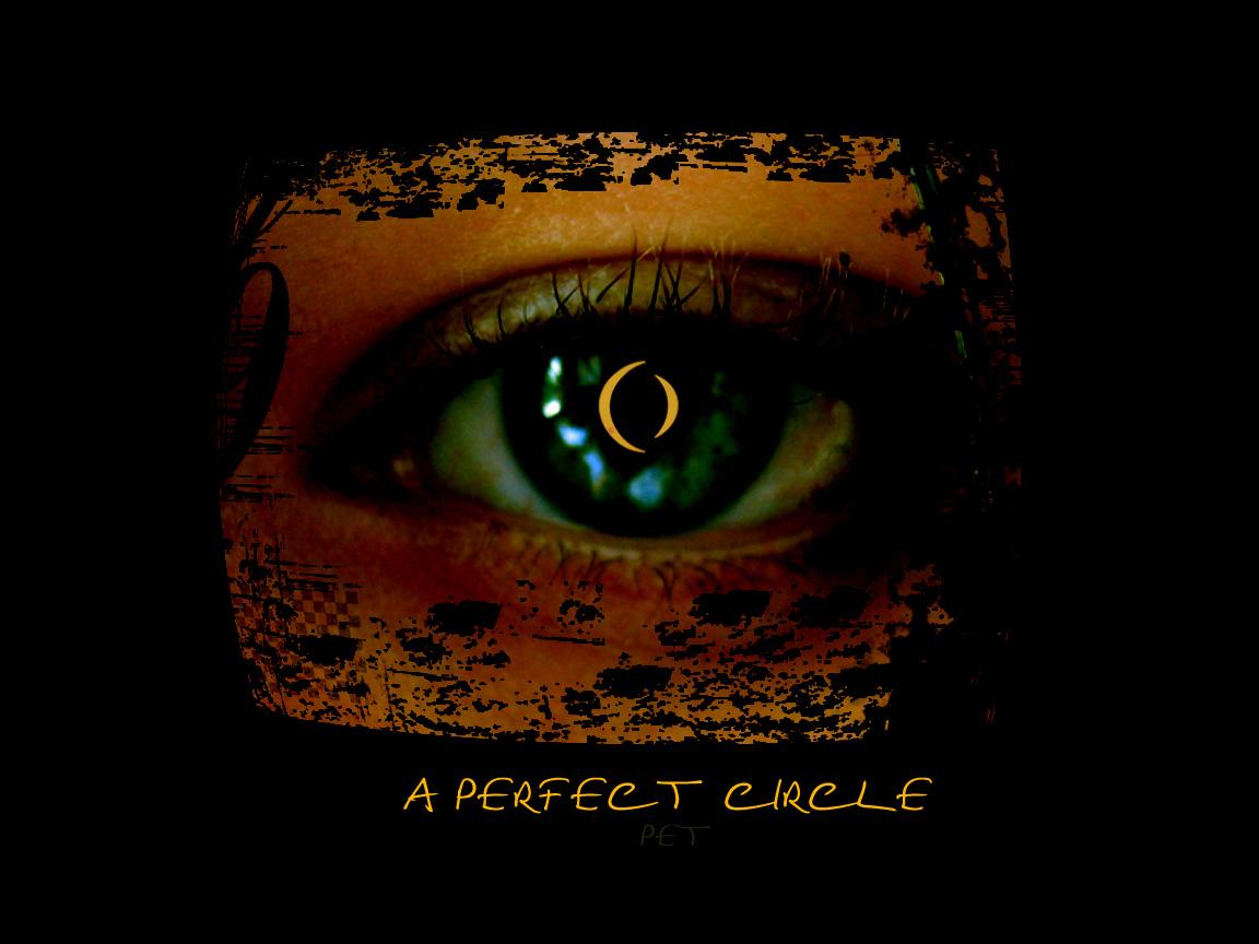 A Perfect Circle-Pet