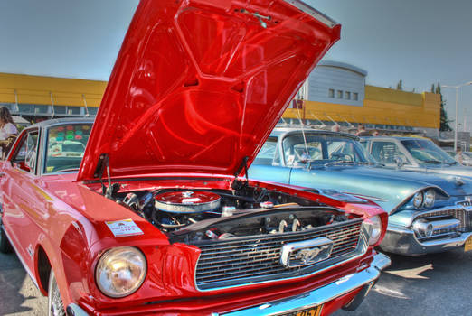 '66 ford mustang