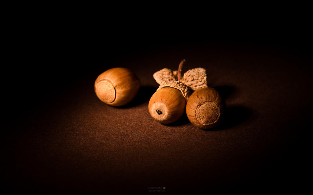 http://fc00.deviantart.net/fs51/i/2009/268/4/1/__Autumn_gift_II_____wide_by_V_ace.jpg