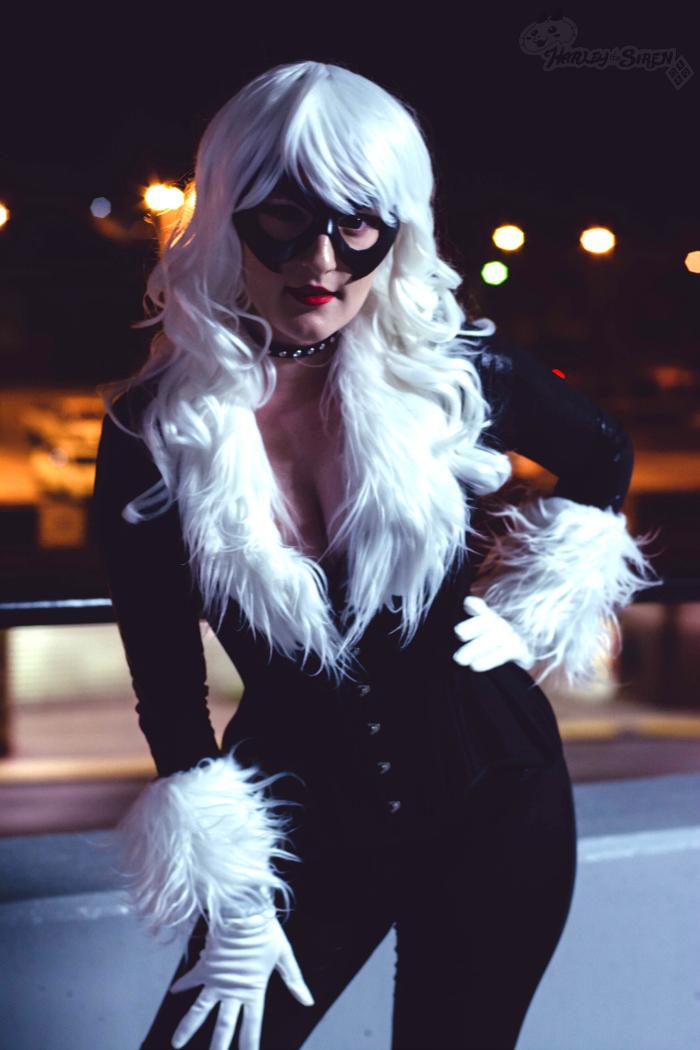 Black Cat: Hello,Spider by HarleyTheSirenxoxo