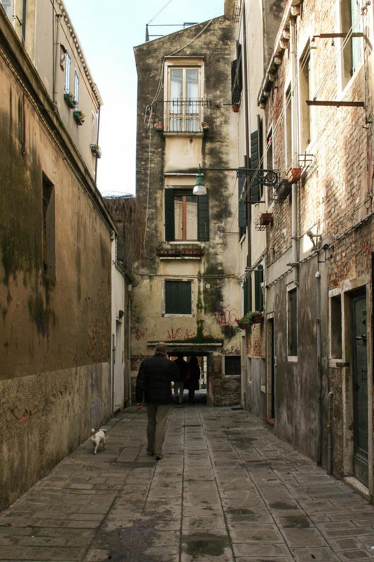 Venetian Dog Walker by uin