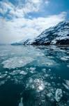 Glacier Bay 0579