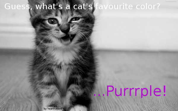 A cat's favourite color by Hearthazard