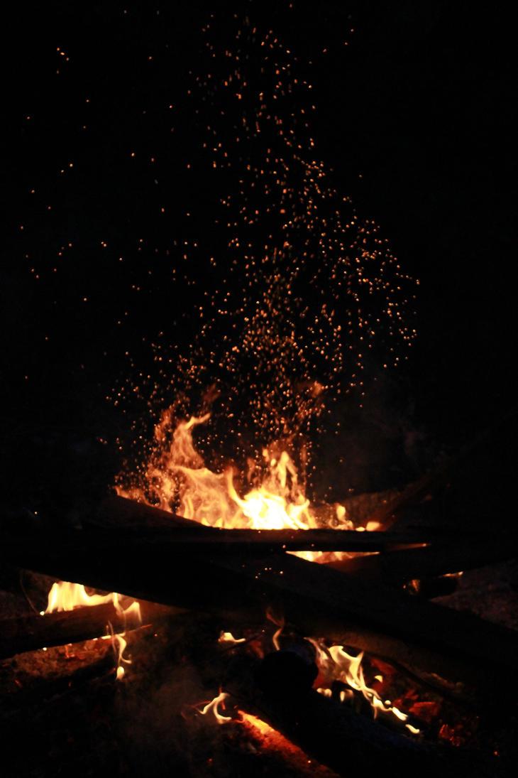 Where fireflies are born by Hearthazard
