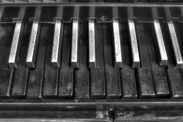 Old Organ Keys by Daemare