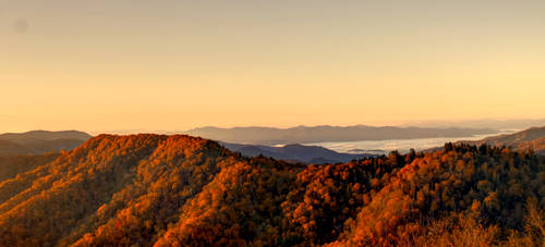 Autumn at Newfoundland Gap