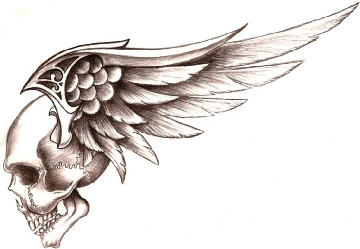 skull wings by 50LbHead