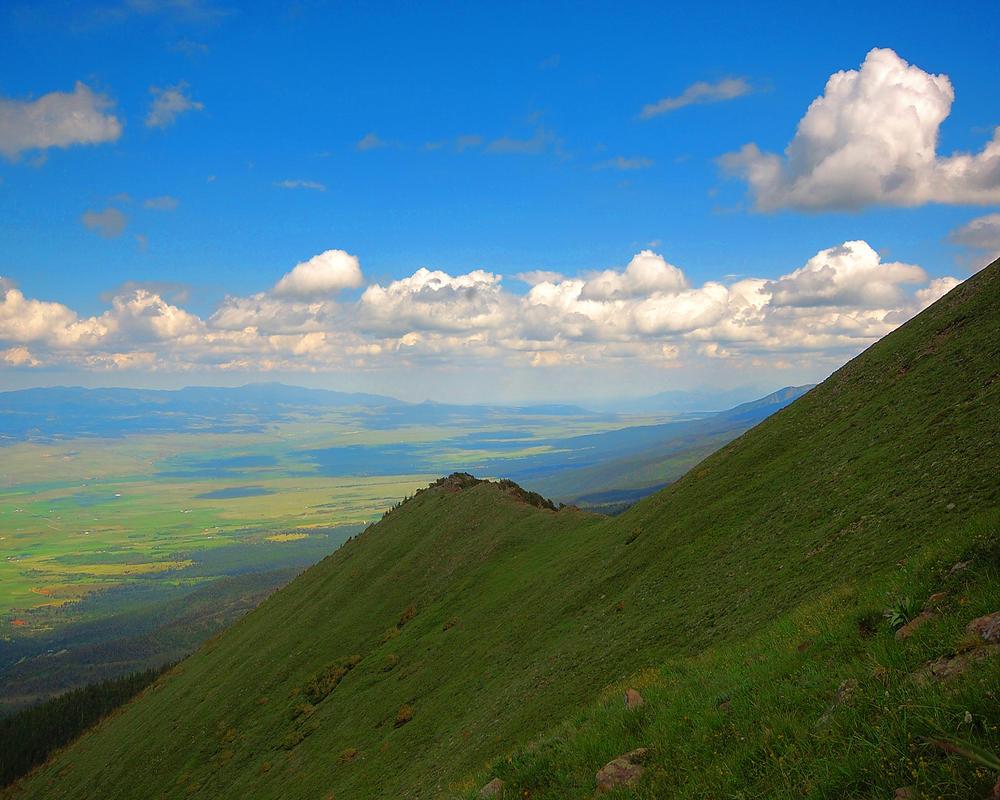 Mountain Tremolo by greenunderground