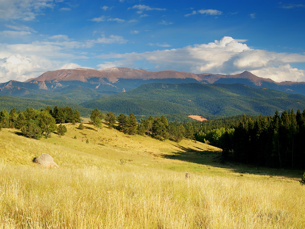 Meadow to Mountain by greenunderground
