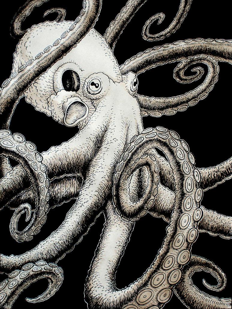 octopus by rode egel