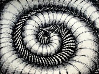 Centipede by Rode-Egel
